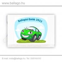 Jeles tarisznya: Autó-zöld