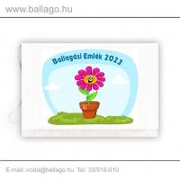 Jeles tarisznya: Cserepes virág