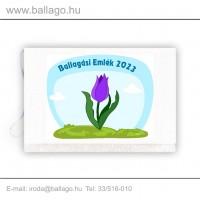 Jeles tarisznya: Tulipán-lila